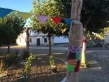 <p>Træerne i byen center var dækkede med strik i alle mulige farver</p>