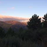 <p>Morgelys i bjergene</p>