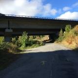 <p>Videre mod anden morgenmad under en motorvejsbro</p>