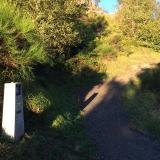 <p>Opad mod San Roque i 1.270 meters højde</p>
