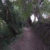 <p>Dybe stier på vej mod San Martino</p>