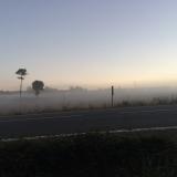 <p>Mere tåge</p>