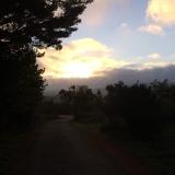 <p>Solen er stået op på vej mod Cee</p>