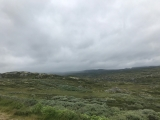 <p>																																		Out on the Hardangervidda </p>