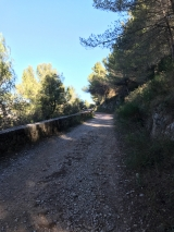 <h5>6</h5><p>Upwards. Still on the dirt road																																</p>