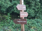 <h5>8</h5><p>																	Sign tells me to move uphill into the forest																	</p>